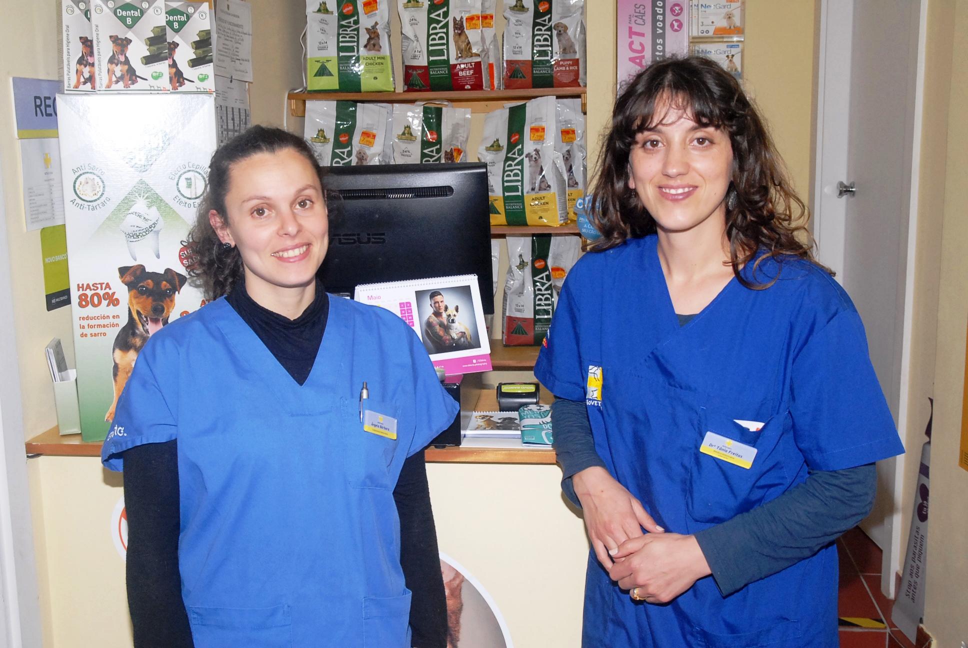 veterinários consultas domicilios